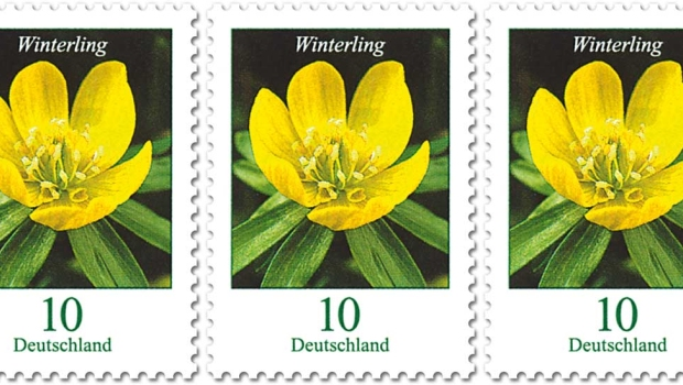 10 Cent Briefmarke Winterling Deutsche Post 2019